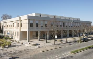 Tribunal PNF